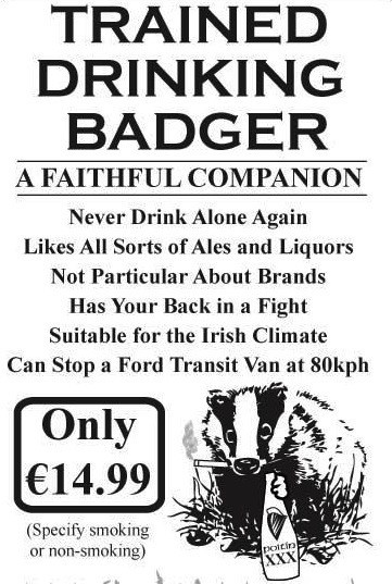 trained drinking badger